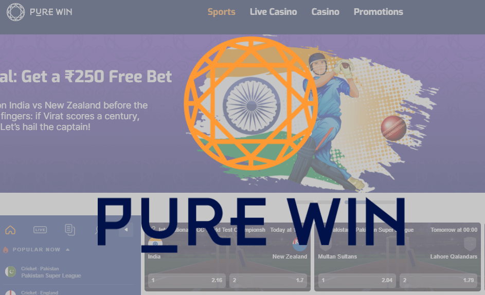 purewin online cricket betting featured